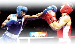 Cuban boxing on the rise