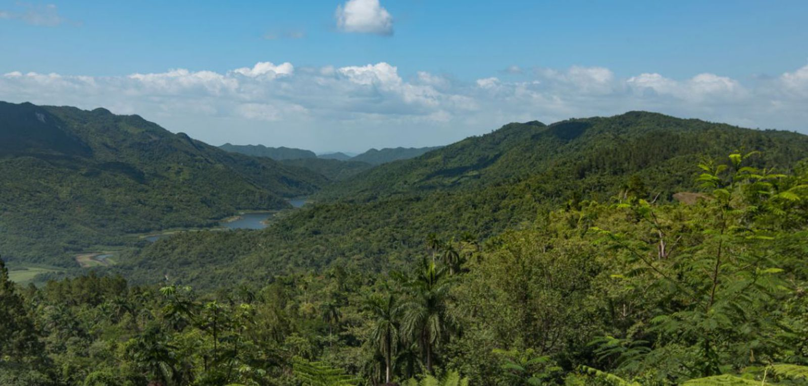 Cuba's nature reserve stands out for its biodiversity