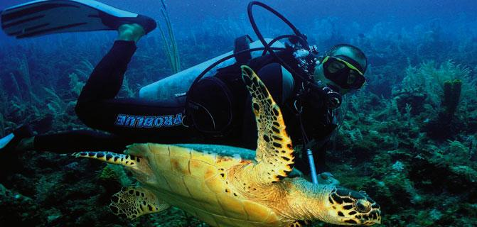 Cuba and the United States will soon culminate marine scientific project