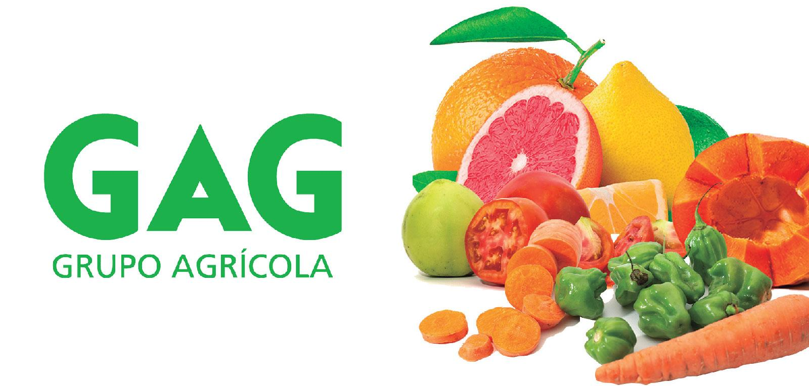Grupo Empresarial Agrícola (GAG), a horizon of possibilities and the answer to many challenges.