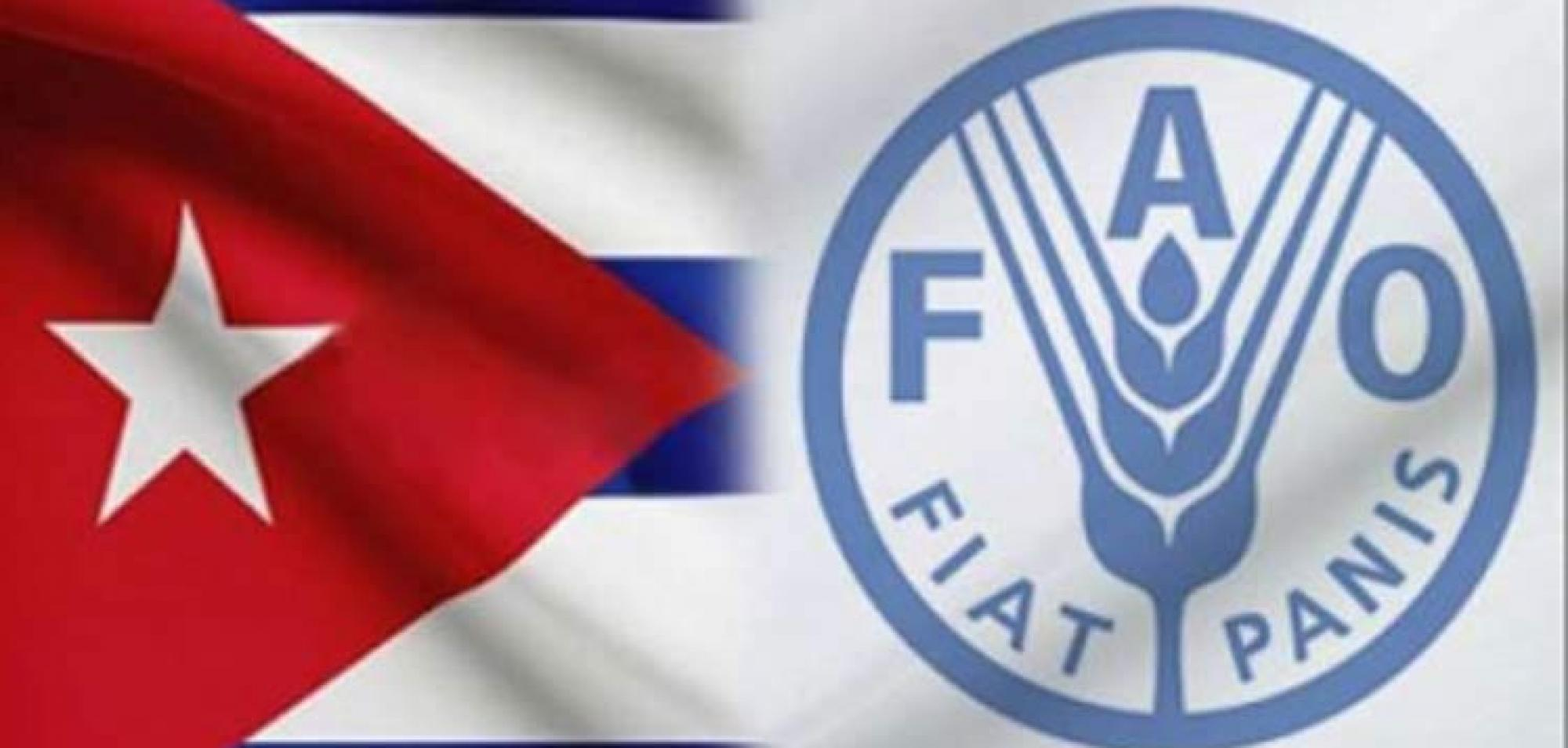 FAO Highlights Cuba's Will in the Fight against Hunger