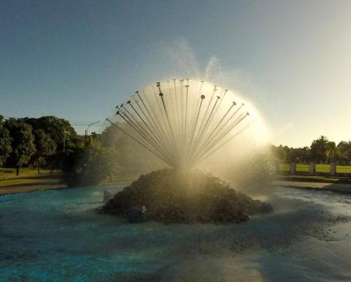 The sea urchin fountain, one of singular beauty