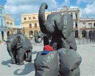 Jeff's elephants live on in Havana
