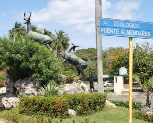 Havana Zoo Garden: conservation, education and recreation